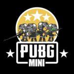 PUBG Mini Multiplayer