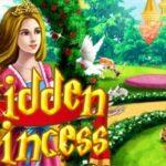Hidden Princess